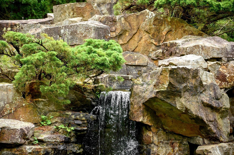 Wdf Wupper Digitale Fotografie Chinesischer Garten Rub Teil 2